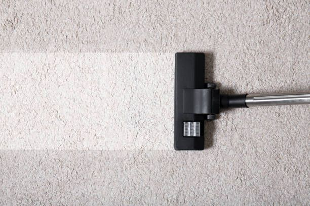 Professional Carpet Cleaners Springfield Oregon
