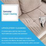 Upholstery Cleaning Eugene