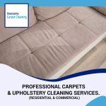 Upholstery Cleaner Eugene