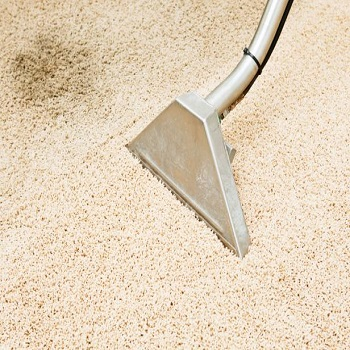 Professional carpet Cleaners Cottage Grove Oregon