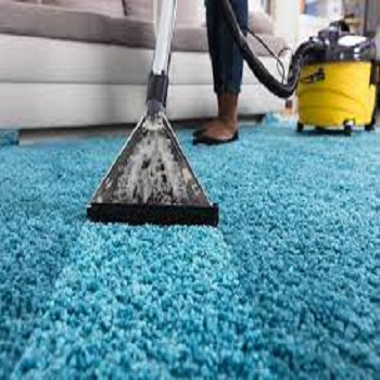 Area Rug Cleaning Eugene
