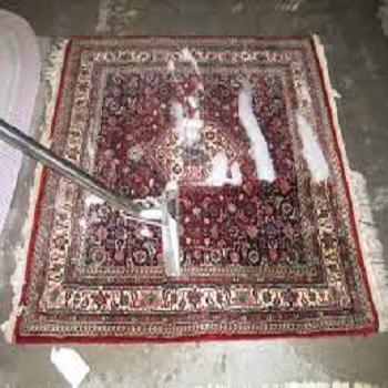 Carpet Cleaner Cottage Grove Oregon